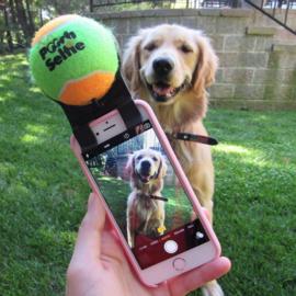 Pooch Selfie for Smartphone