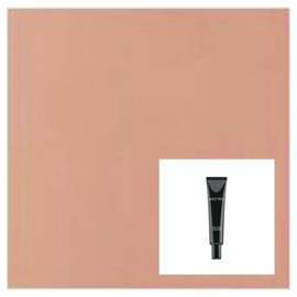High Cover Concealer | Light Apricot no.5