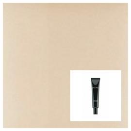 High Cover Concealer | Light Beige no.2