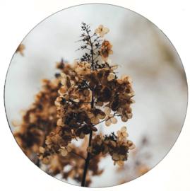 Muurcirkel | mini flower 20cm