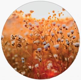 Muurcirkel | lovely flower 20cm