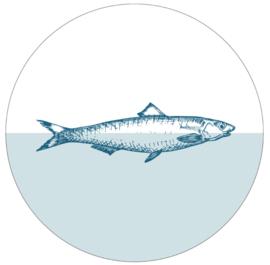 Muurcirkel fish zeeblauw 30cm