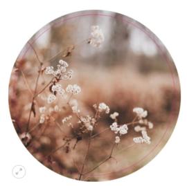 Muurcirkel dry flower 40cm
