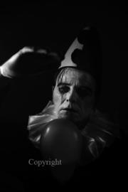 Pierrot  -  the Story   - het verhaal van Pierrot  (work 3)