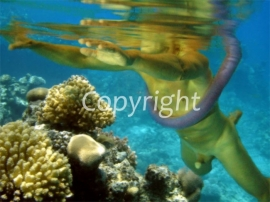 Under Water (work 9)
