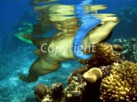 Under Water (work 5)