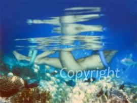 Under Water (work 4)