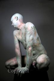 Petrified (work 12)