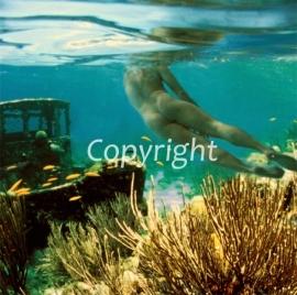 Serie : Under Water (onder water).