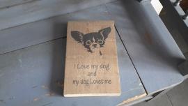 Chihuahua op steigerhout