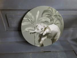 Nat47 Olifantje
