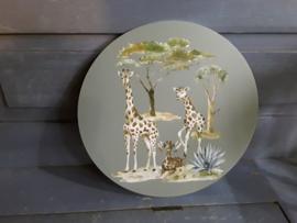 Nat45 Giraffen familie