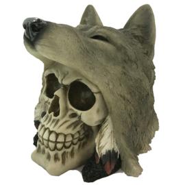 Schedel met Wolf Hoofd