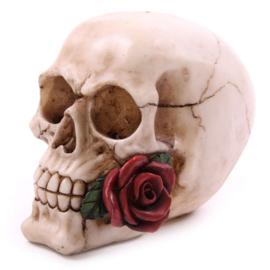 Schedel met roos