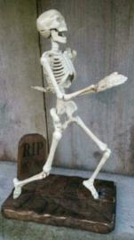 Gietijzeren skelet op houten sokkel