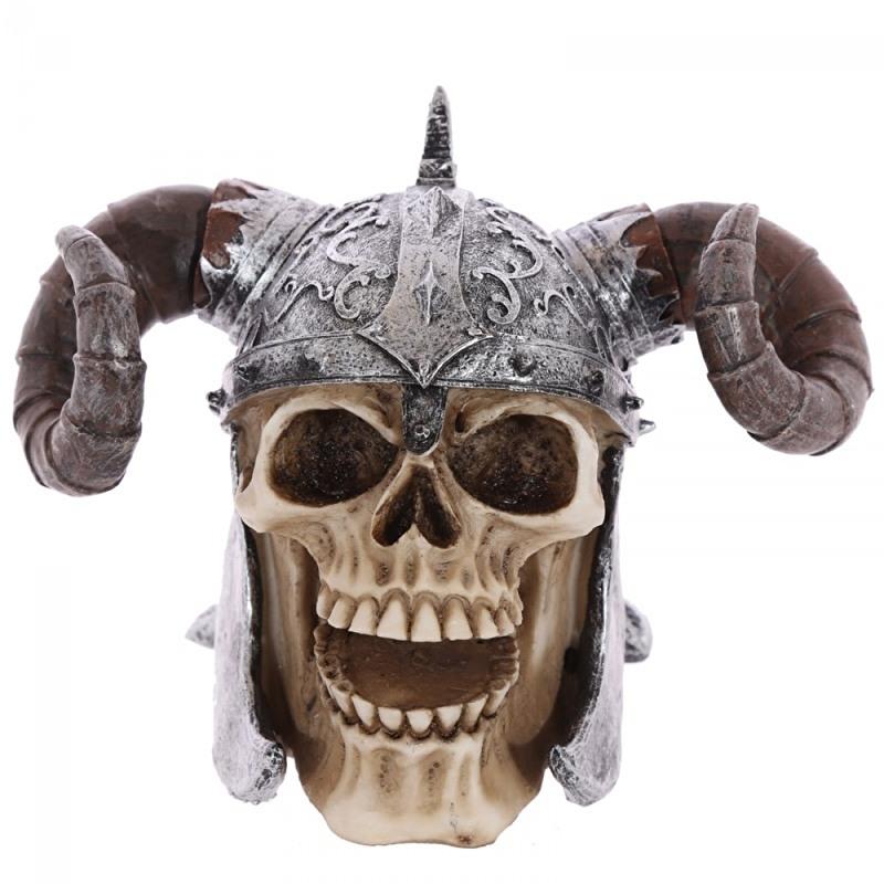 Viking schedel met gedraaide hoorn