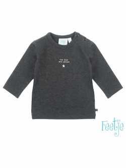 Shirt dreams can come true grijs 516.01340