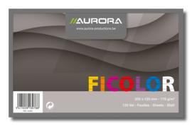 Fivory Systeemkaarten gekleurd 20 x 12,5 cm, gelijnd, 42460