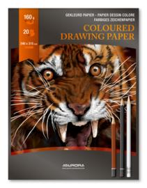 Pak van 10 x Hobby/Knutsel/Tekenblok Colour 240x315 mm gekleurd papier BL37