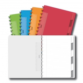 ADOC Colorlines A4 Notebook + Pockets + Dividers Feint