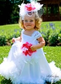 Haarclip voor Here Comes the Bride Flower Girl Dress