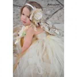 Haarband voor Beautiful Dream PrincessTutu Dress