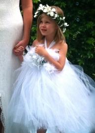Dream Angel Tutu Dress