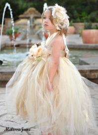Beautiful Dream PrincessTutu Dress