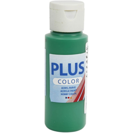 Plus color Verf 60 ml. briljant groen