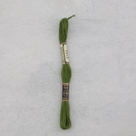 2543 groen - combinatie V915
