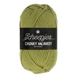 Scheepjes Chunky Monkey 1065 sage