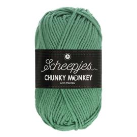 Scheepjes Chunky Monkey  1725 euqaliptus
