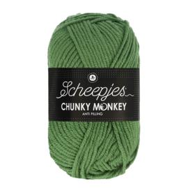 Scheepjes Chunky Monkey 1824 pickle