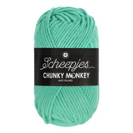 Scheepjes Chunky Monkey  1422 aqua