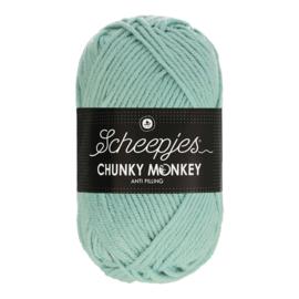 Scheepjes Chunky Monkey  1820 mist