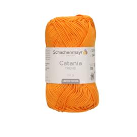 Catania Apricot 299 Trend 2021