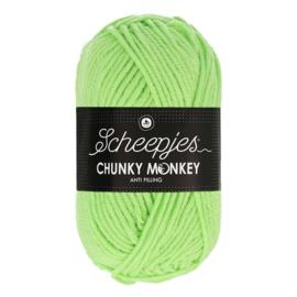 Scheepjes Chunky Monkey  1316 pistachio