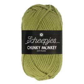 Scheepjes Chunkey Monkey 1065 Sage