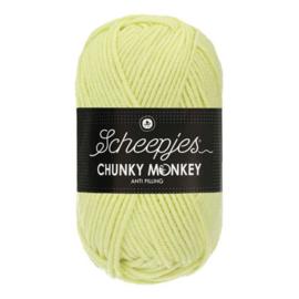 Scheepjes Chunkey Monkey 1020 Mint