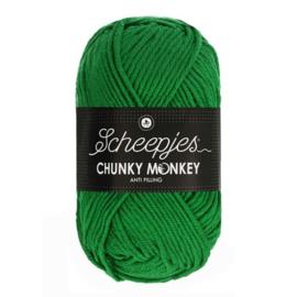 Scheepjes Chunkey Monkey 1826 Shamrock