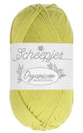 Scheepjes Organicon-213