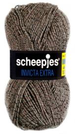 Scheepjes Invicta Extra 1362