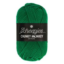 Scheepjes Chunkey Monkey 1116 Juniper