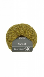 durable-forest-4017