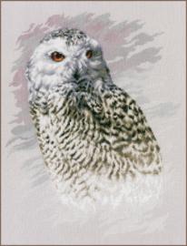 TELPAKKET KIT SNOWY OWL