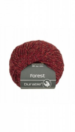 durable-forest-4019