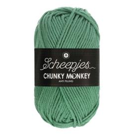 Scheepjes Chunkey Monkey 1725 Eucalyptus