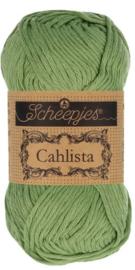 Scheepjes Cahlista 212 Forest Green