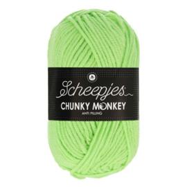 Scheepjes Chunkey Monkey 1316 Pistachio