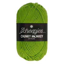Scheepjes Chunkey Monkey 2016 Fern